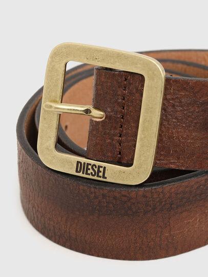 Diesel - B-ROCCO, Brown - Belts - Image 2